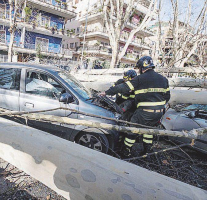 Calabria, il vento fa un morto e oggi a Cosenza scuole chiuse. A Roma cadono quattro alberi