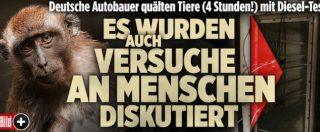 """""""Test sulle scimmie per provare effetti dei gas di scarico"""" di Bmw, Daimler e Volkswagen"""