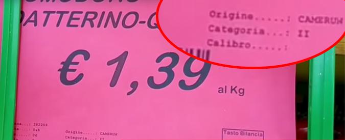 """Pachino, il ministero agli agricoltori: """"Mai importato pomodori dal Camerun"""". Ma le etichette del supermercato dicevano il contrario"""