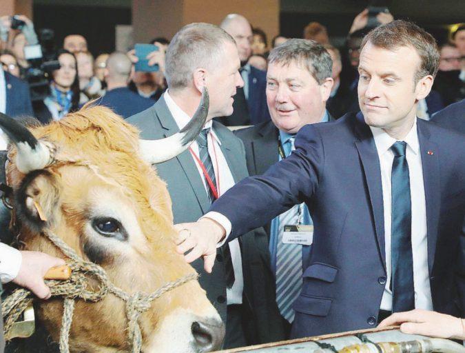 Vivere con 350 euro al mese: gli agricoltori contro Macron