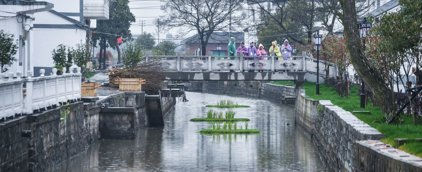 Giornata mondiale dell'acqua, affrontare le alluvioni con Borges e praticità