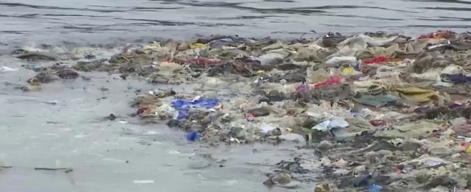 """Plastica, ogni settimana ne ingeriamo 5 grammi con acqua e cibi: """"Come mangiare una carta di credito"""""""