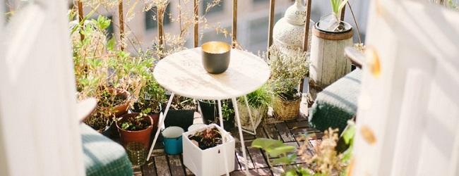 La casa da sogno ha il terrazzo o il giardino