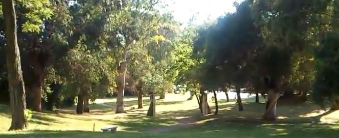 """Roma, donna trovata carbonizzata in un parco. Ipotesi omicidio. La scoperta fatta da un runner: """"Bruciava ancora"""""""