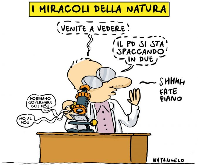 La vignetta di Natangelo