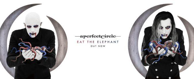 Eat the elephant, gli A perfect circle sono tornati. E ci siamo cascati tutti