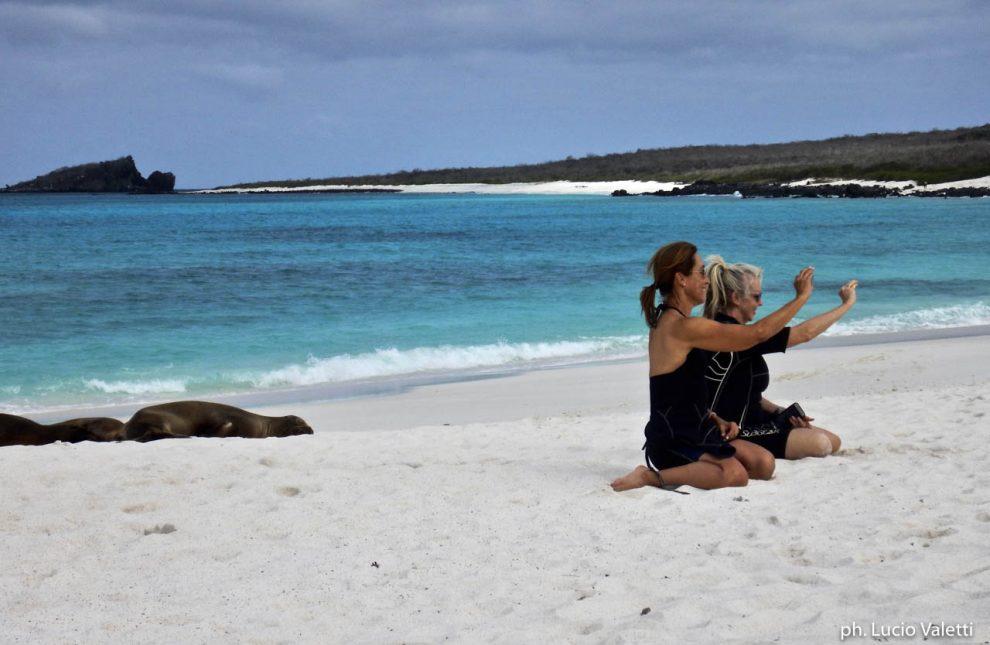 Selfie con le foche su una spiaggia