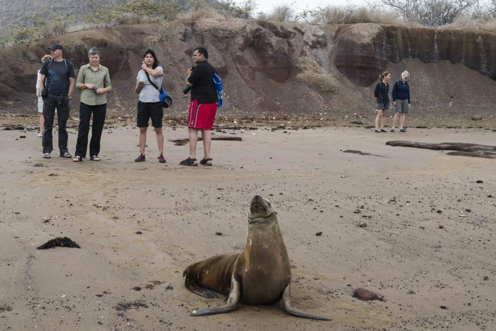 Turisti sull'isola Floreana
