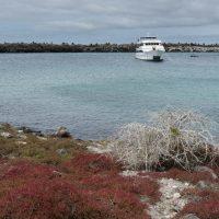 Lo yacht del viaggio ancorato in una baia