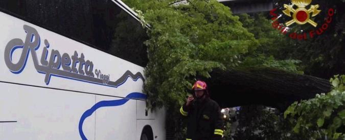 """Firenze, albero cade su un bus turistico: quattordici feriti. """"Controllato nel 2016"""""""