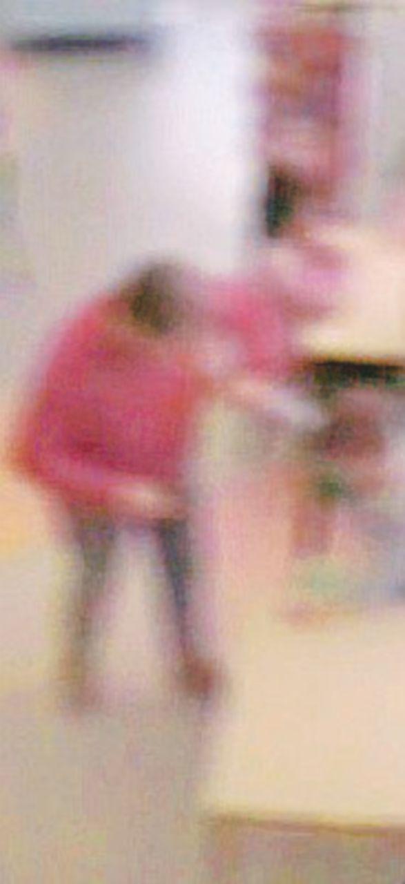 Il focus: le colpe dei maestri