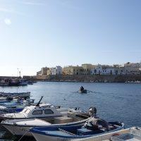 Il vecchio porto. Sullo sfondo le mura della città.