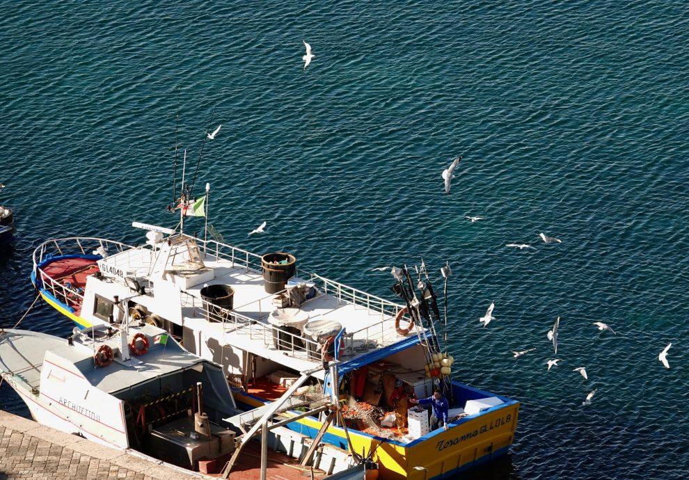 Pescatori al lavoro.