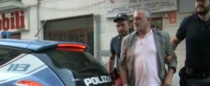 """'Ndrangheta, il business dei cani randagi: """"Campagne mediatiche per screditare i gestori dei canili. Ingannata pure Striscia"""""""