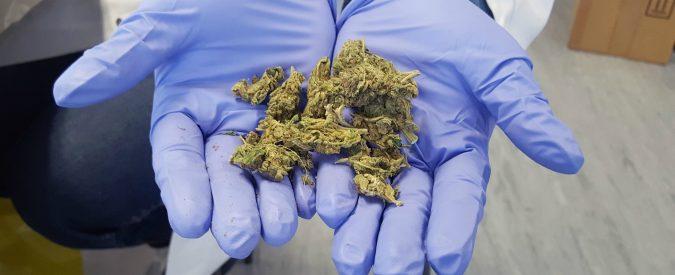 Cannabis light, no. Alcol, psicofarmaci e sigarette, sì. La schizofrenia dello Stato