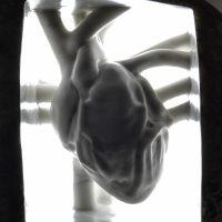 Jago – Muscolo minerale (2017) Sasso di fiume, marmo statuario