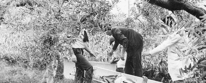 """1981, il killer diventa """"serial"""" e gli omicidi salgono a tre"""