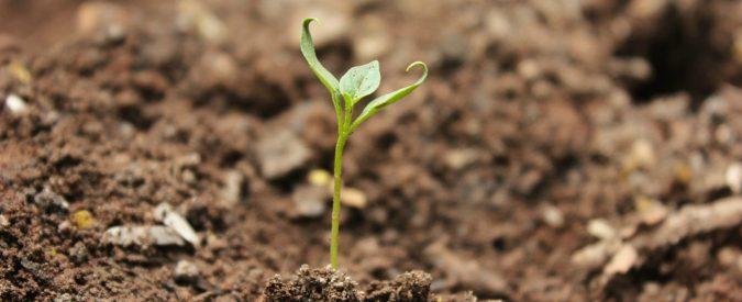 Consumo di suolo: l'Ispra fornisce dati, l'Italia non se ne cura