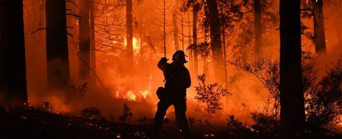 Con gli incendi dovremo convivere o stiamo sbagliando strategia?