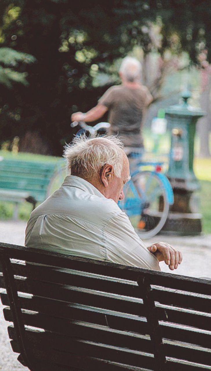 """La certezza del tg estivo: """"Anziani soli e animali in strada"""""""