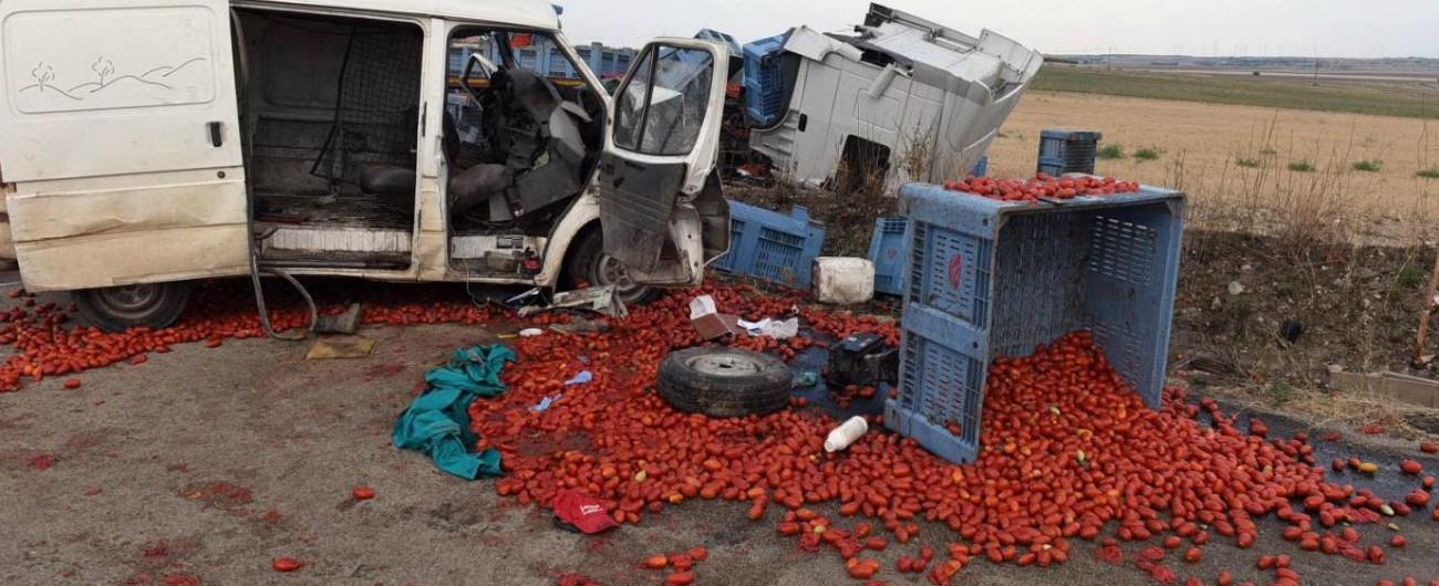 Foggia, braccianti morti in incidente: proclamato lo sciopero per mercoledì. Indagine per caporalato