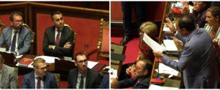 """Senato, Marcucci (Pd) a Di Maio: """"Conosce il lavoro? Ha mai provato la soddisfazione di un'assunzione?"""". Insorge il M5s"""
