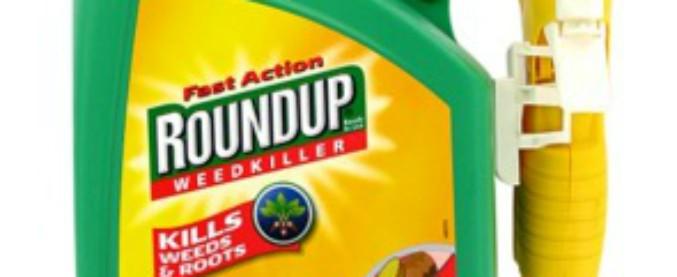 Glifosato, Bayer condannata in Usa a risarcire di 78 milioni di dollari per cancro. E crolla in Borsa