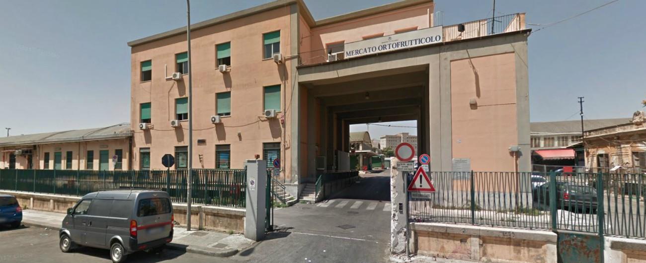 """Mafia, le mani di Cosa Nostra sul mercato ortofrutticolo di Palermo: """"Regia occulta per imporre prezzi"""". Confiscati 150 milioni"""