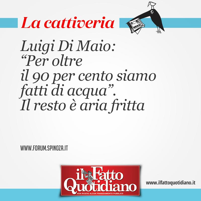 """Luigi Di Maio: """"Per oltre il 90 per cento siamo fatti di acqua"""". Il resto è aria fritta"""