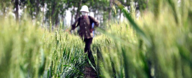 Agricoltura, chi inquina non paga e chi rispetta la natura è penalizzato