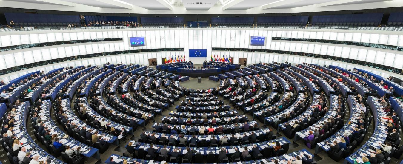 Sondaggi Europee, Lega al suo massimo: 35,8%. In calo tutti gli altri, da M5s a Pd
