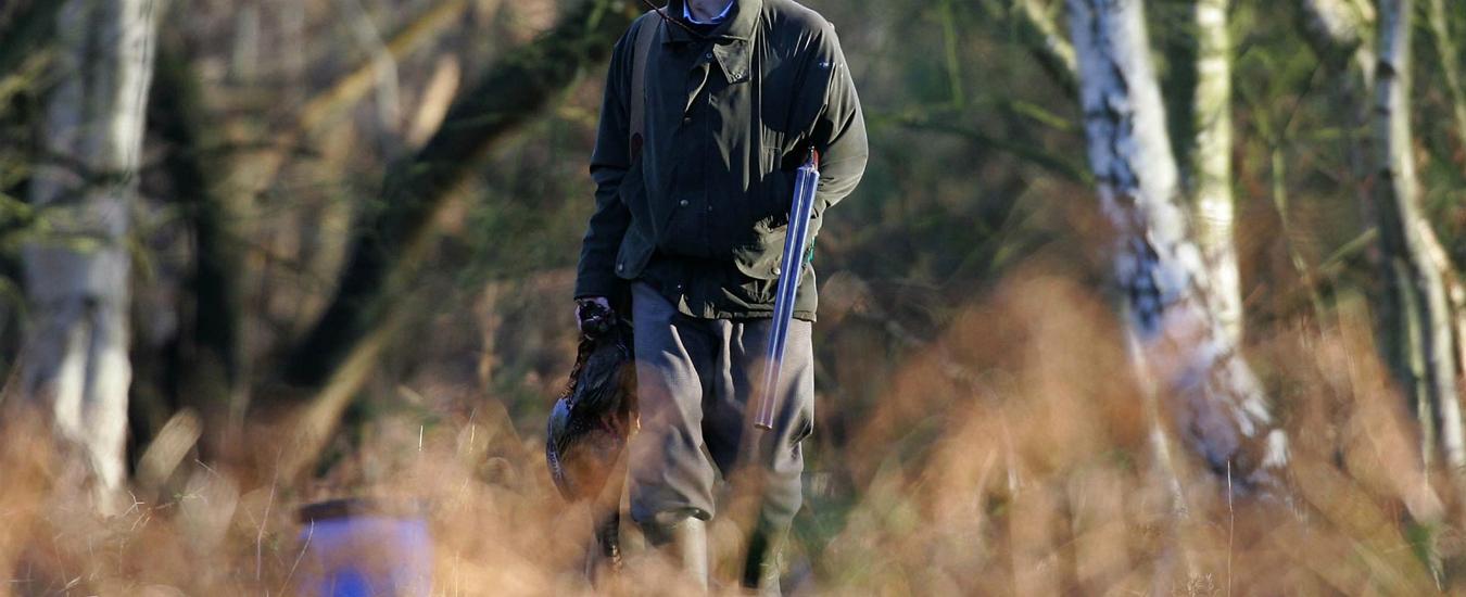 Osimo, bimbo di 10 anni ferito da pallini da caccia. Indagini in corso