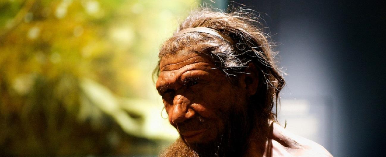 """""""Crollo nel campo magnetico terrestre, così si estinse l'uomo di Neanderthal"""""""