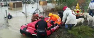 Maltempo Calabria, 250 cani rischiano di annegare nel canile di Cirò Marina. L'intervento dei pompieri dopo l'alluvione