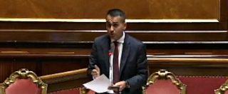"""Reddito di cittadinanza, Di Maio: """"Chi imbroglia rischia fino a sei anni di galera. Serie di misure contro i furbi"""""""