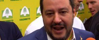 """Manovra, Salvini: """"Stime Pil? Sono limitate"""". Poi attacca: """"Juncker e Moscovici hanno rovinato l'Europa e l'Italia"""""""