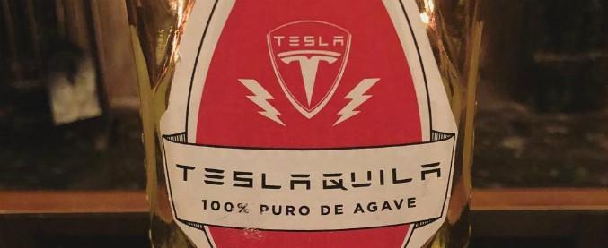 Elon Musk, l'ultima trovata del Divino: produrrà tequila. Anzi, Teslaquila