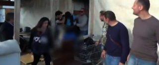 Desirée Mariottini, fermato a Foggia un quarto indagato. Il video diffuso dalla polizia