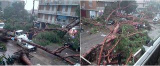 Maltempo, tromba d'aria nel centro di Terracina: alberi divelti e auto distrutte. Un morto e diversi feriti