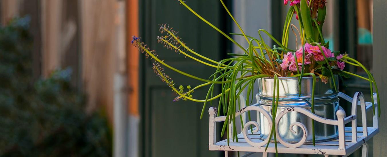 Il pasticciaccio dei vasi sul terrazzo. Sette anni e tre processi per (non) toglierli