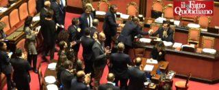 Decreto Sicurezza, il Senato approva con 163 sì alla fiducia: esulta la Lega