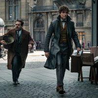 Animali fantastici – I crimini di Grindelwald, J.K.Rowling è ancora lì: ...
