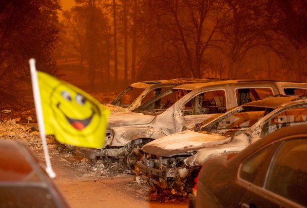 Incendi in California, tutti che gridano al colpevole. Pecca