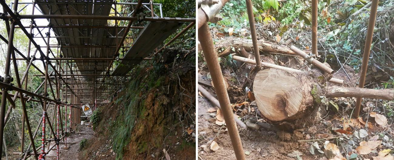 """Portofino, alberi tagliati e tubi nel parco per uscire dall'isolamento. Italia nostra: """"La strada non è finita, ma è già inutile"""""""