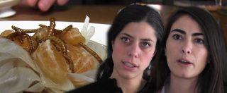 Novel food, il 40% degli italiani pronti a mangiare insetti. Un nostro cronista ha provato grilli, camole e locuste