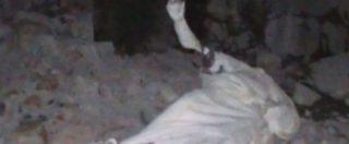 Etna, su Twitter la foto della statua distrutta di sant'Emidio protettore dal terremoto