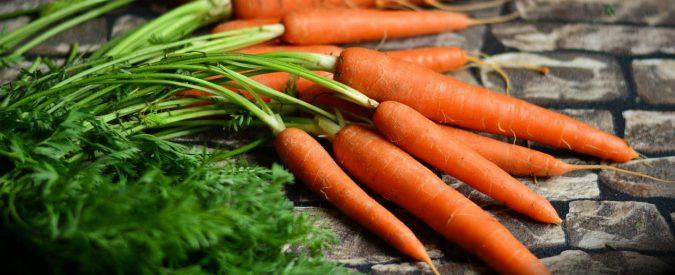 Le carote fanno bene alla vista? Sicuramente aiutano, ma c'è di meglio