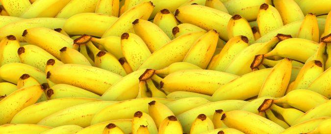 Banane, tra potassio e cure anticancro. Due bufale da sfatare