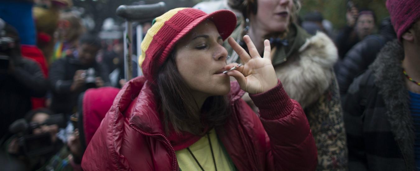 Cara sinistra, se vuoi salvarti legalizza la cannabis