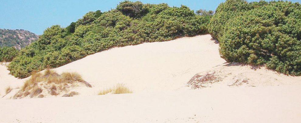 Chia, perché la spiaggia delle Dune resti pubblica servono ancora trentamila euro